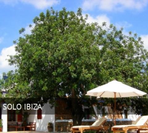 Hotel Sa Vinya d'en Palerm, opiniones y reserva