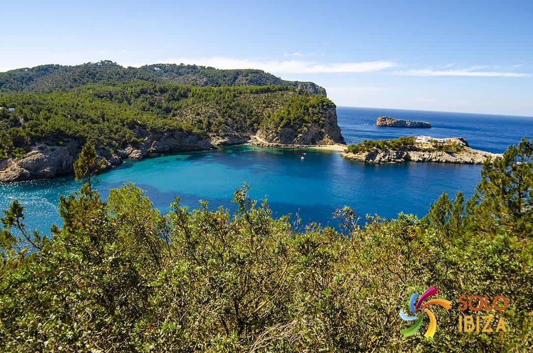 Alquiler de coches en San Miguel Ibiza